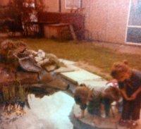 Children round the school pond