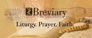 ibrivery-27706_500x210 (1)