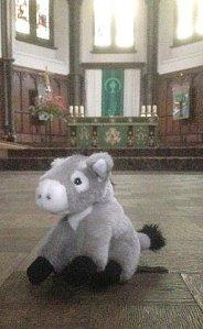 Donkey 15 use